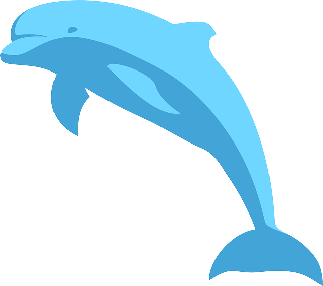 Dolphin clipart scene. Stephanie combined on emaze
