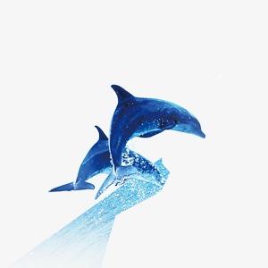 Dolphin clipart summer. Creative blue