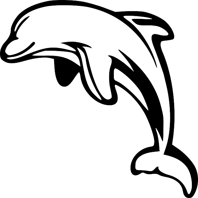 Animated dolphins clip art. Dolphin clipart sunset