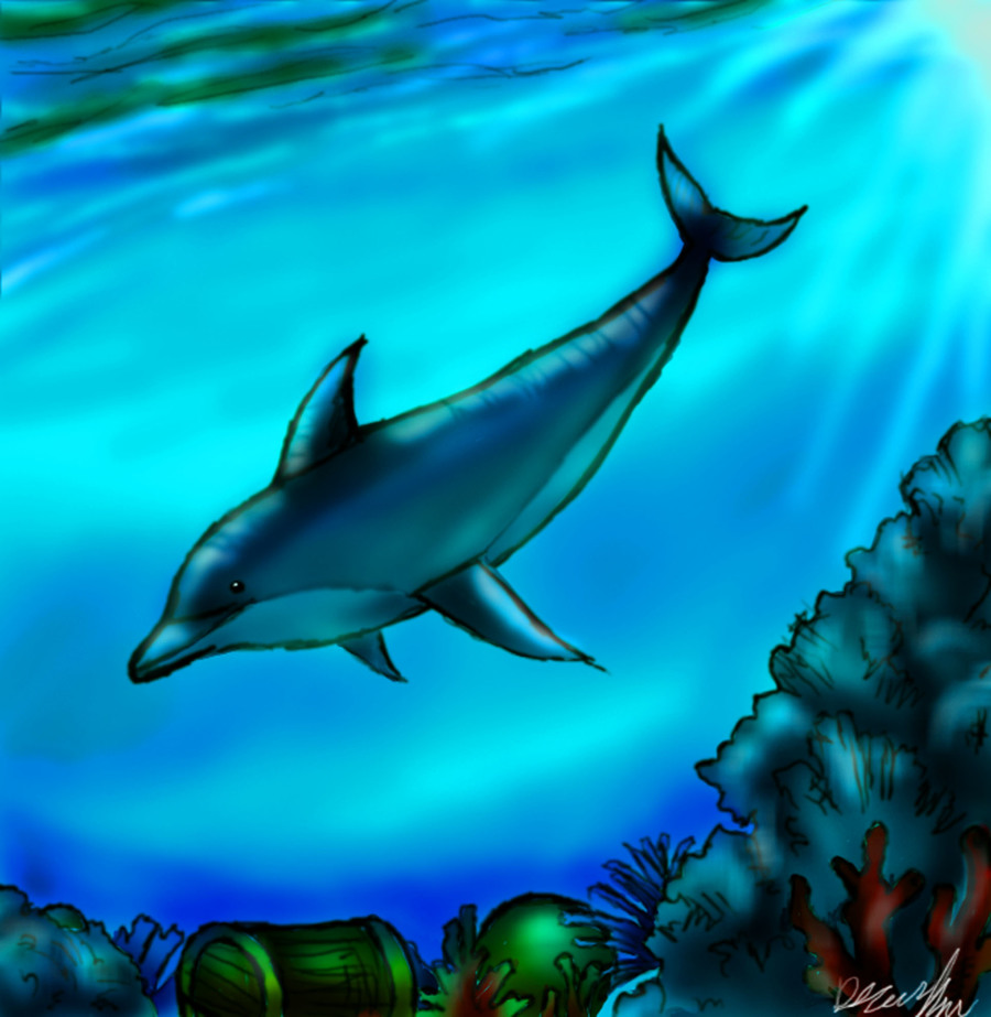 Dolphins clipart underwater. Download dolphin drawing how
