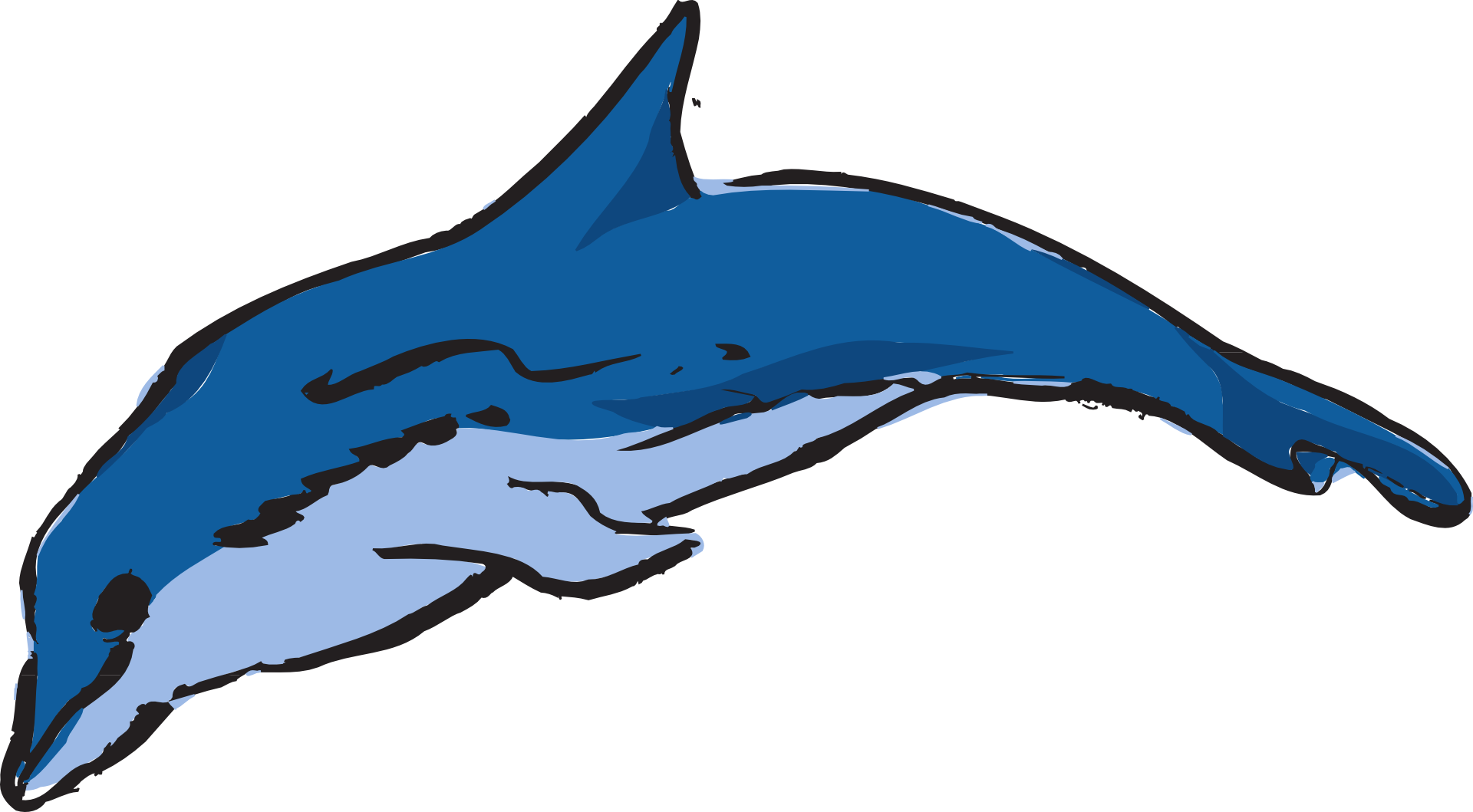 Clip art transprent png. Dolphins clipart amazon river dolphin