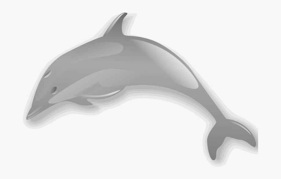 Dolphins clipart dolphin face. Enrique meza c clip