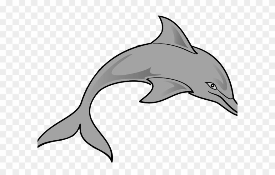 Dolphins clipart grey dolphin. Couple transparent clip art