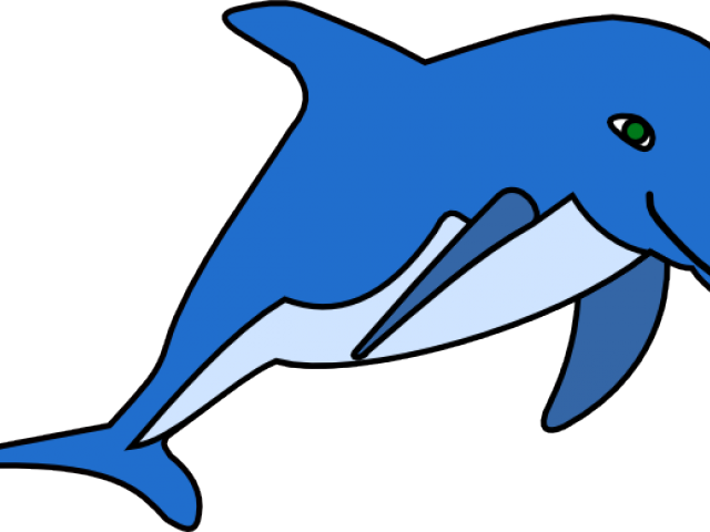 Dolphins royalty free