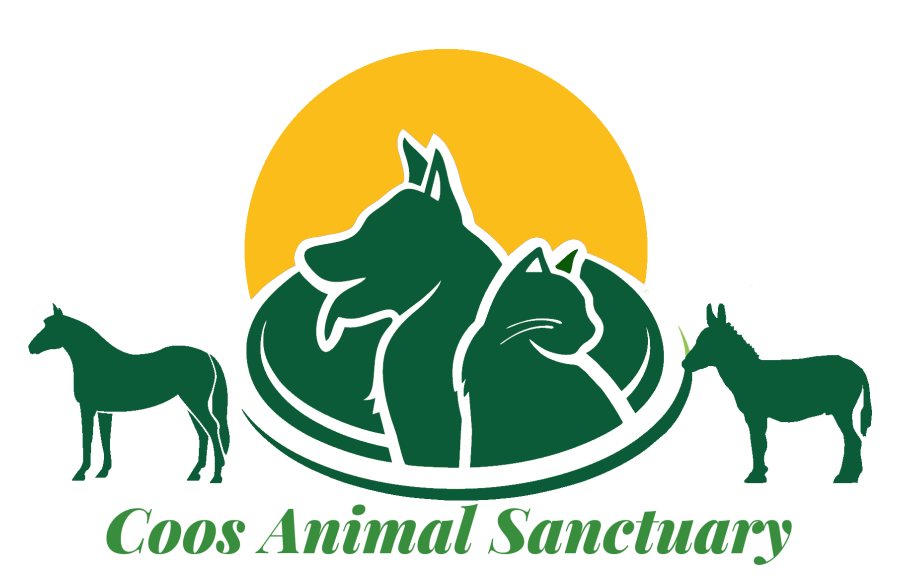 Pet clipart animal sanctuary. Favimage png