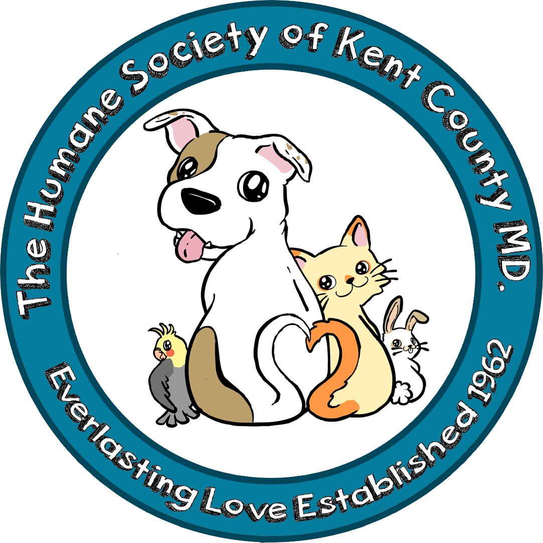 Pet clipart animal welfare. Town of chestertown control