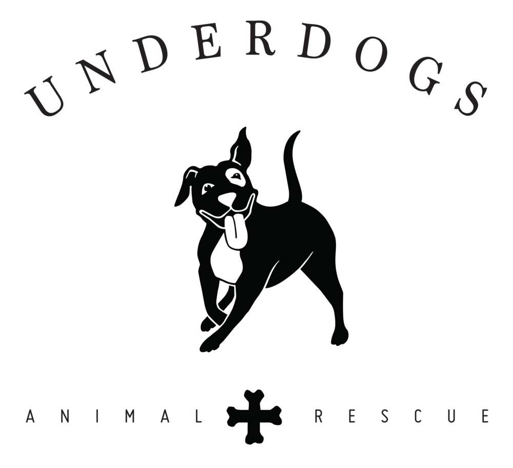 Donation clipart pet shelter. Petstablished underdogs animal rescue
