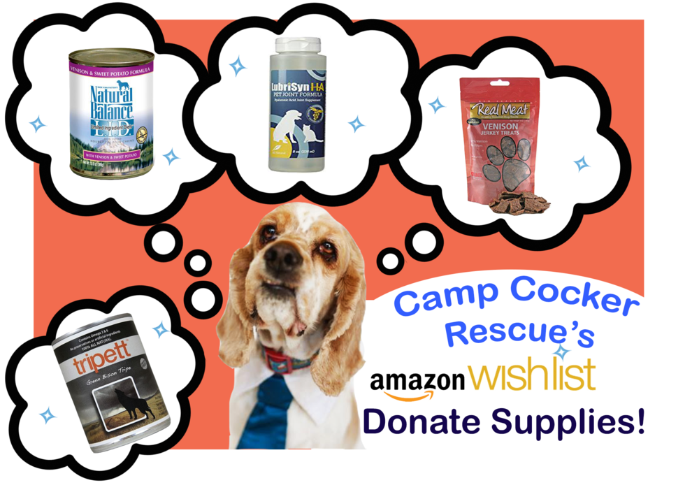 Camp cocker rescue newamazonwlpng. Donation clipart shelter dog