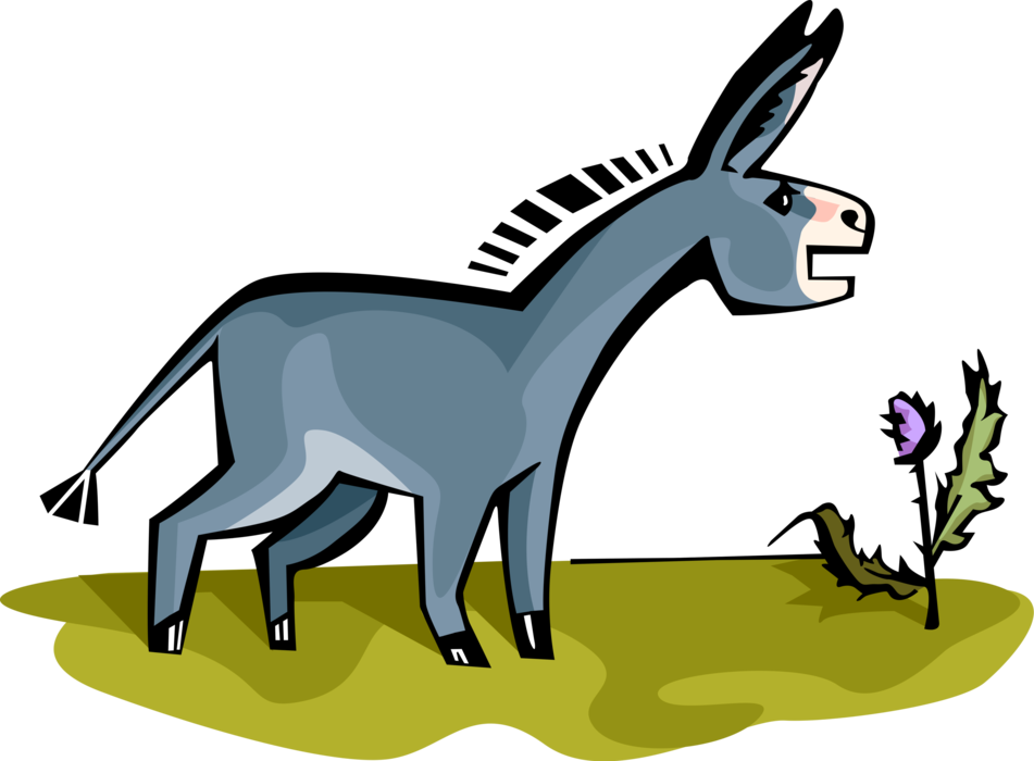 Donkey or ass vector. Mule clipart domesticated