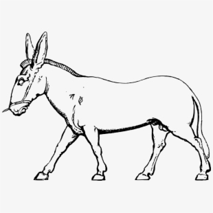 Donkey pack animal farm. Mule clipart domesticated
