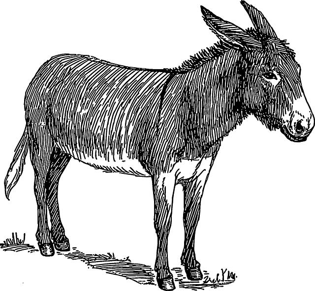 Donkey clipart nativity donkey. Kostenloses bild auf pixabay