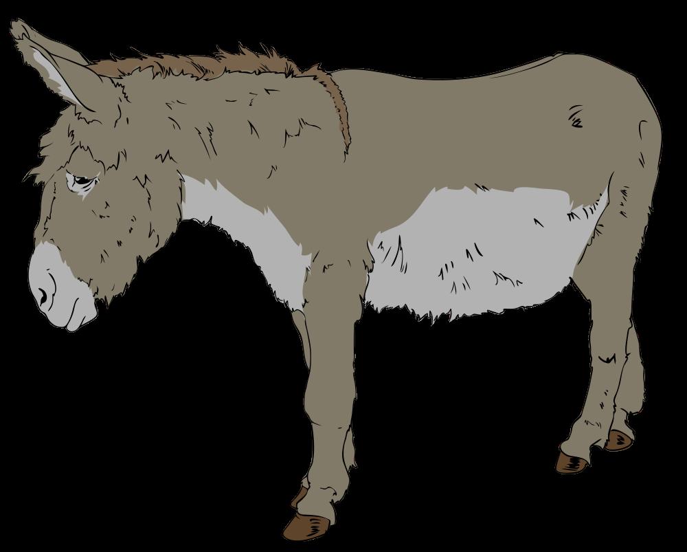 Donkey free on dumielauxepices. Mule clipart sad