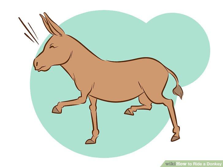 How to ride a. Donkey clipart tiny horse