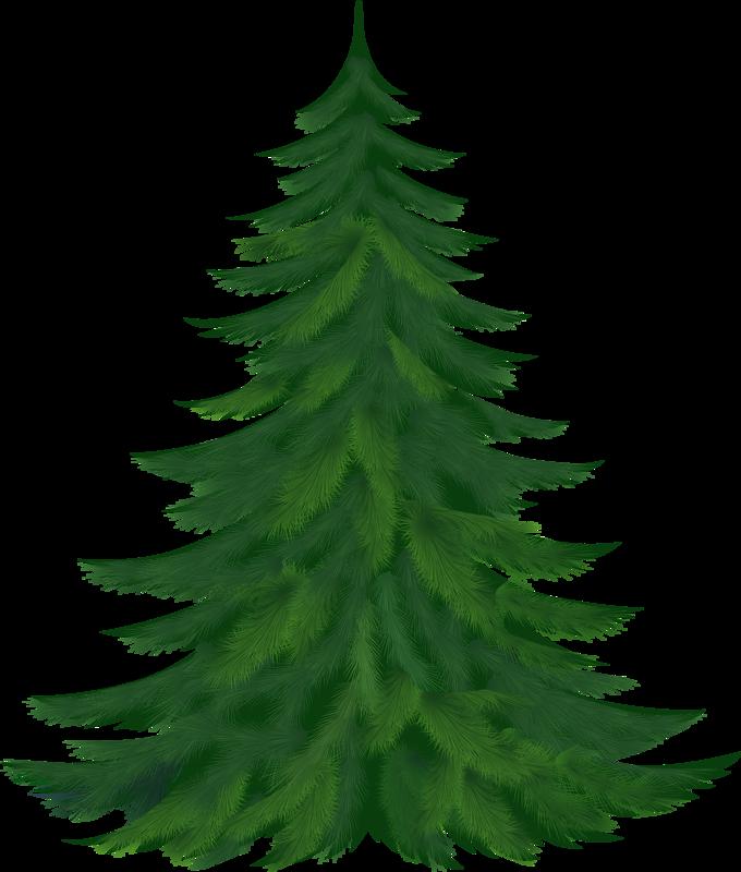 mistletoe clipart translucent