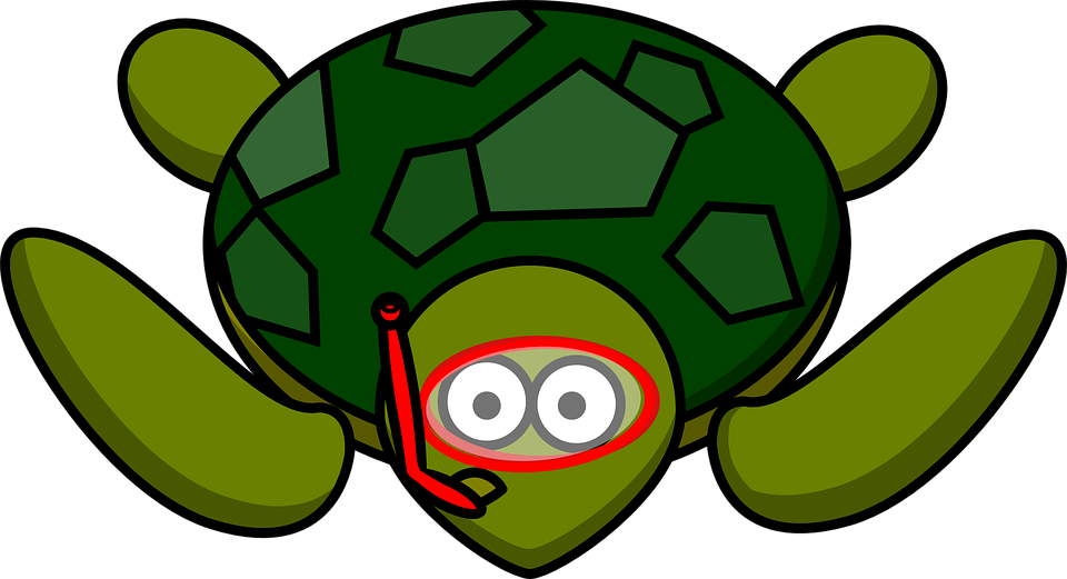 Dory clipart cartoon baby. Turtle free on dumielauxepices