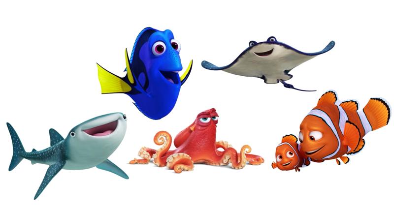 Starfish finding dory