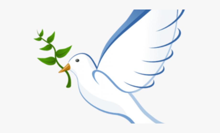 Peace the bird animation. Birds clipart dove