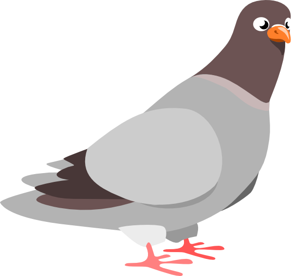 Cartoon animation pinterest rick. Wing clipart pigeon wing
