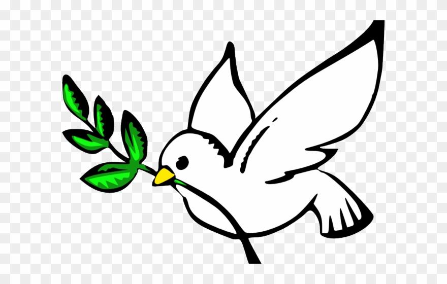 Doves clipart transparent background. Dove pictures clip art