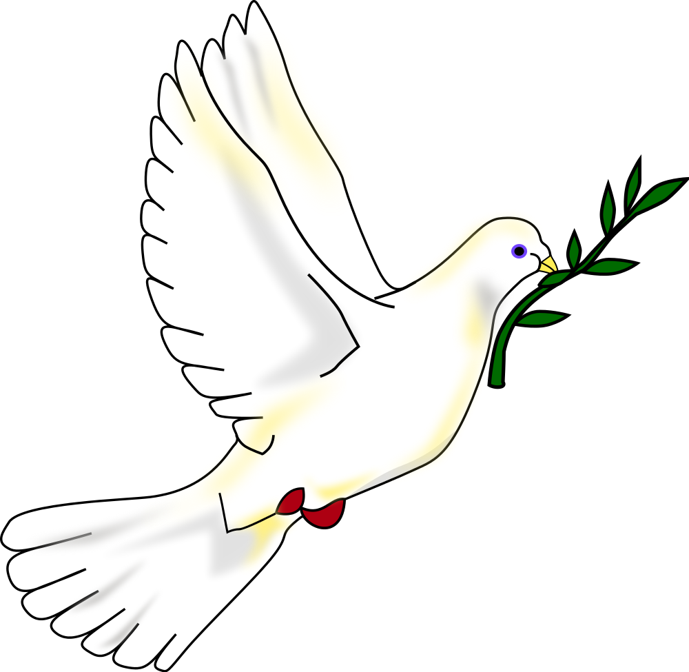 Peace olive free collection. Dove clipart day