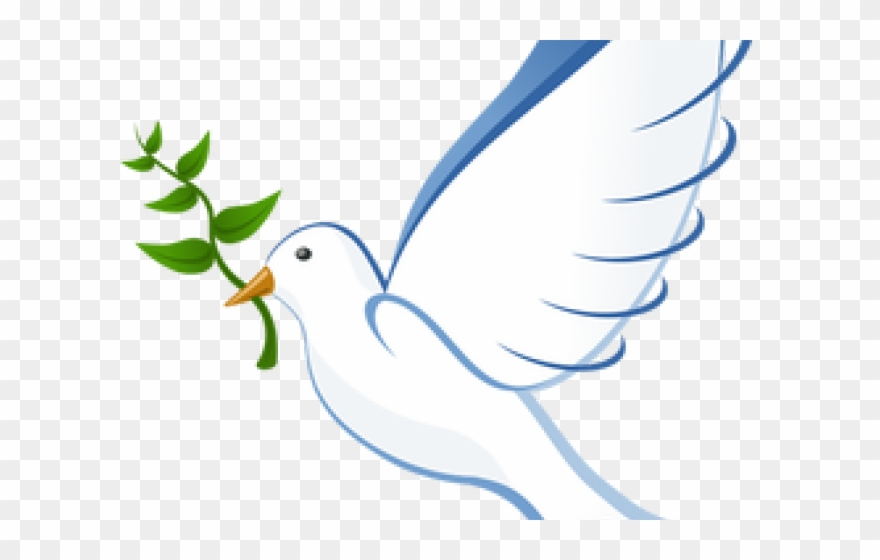 Dove clipart day. White olive branch international