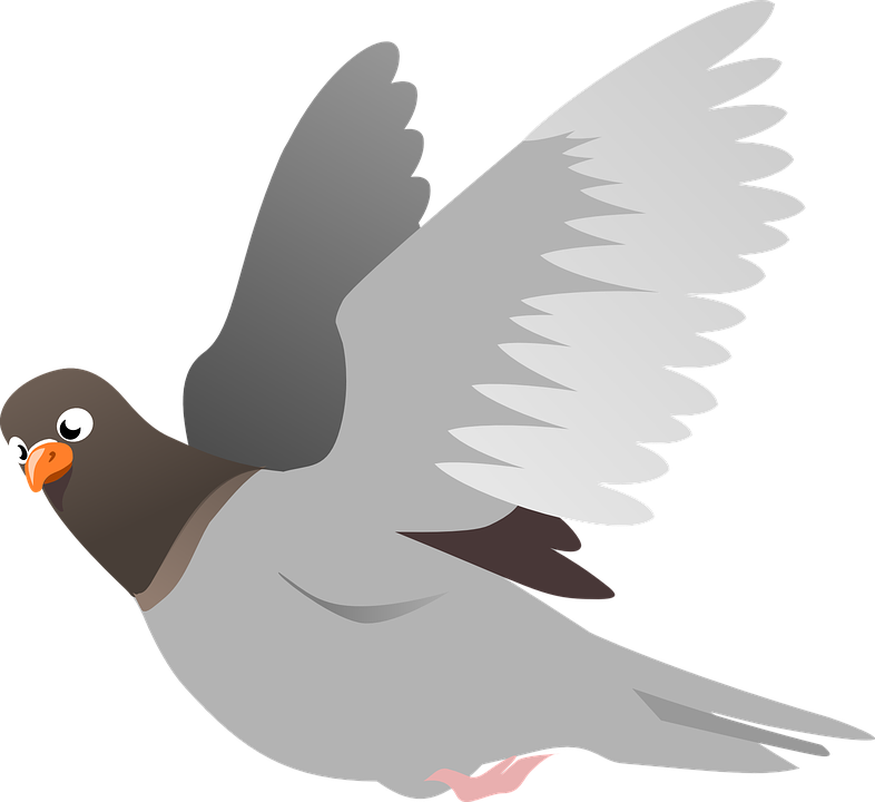 Peace dove flying simple. Pigeon clipart carrier pigeon