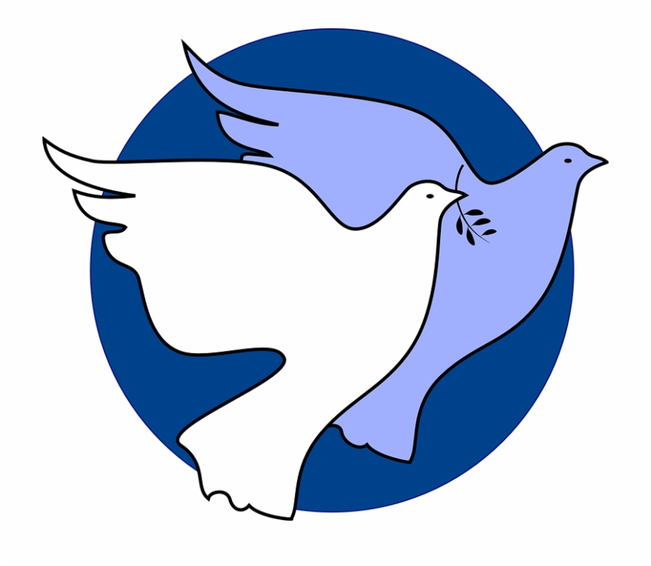 Dove peace symbol bird. Freedom clipart unity