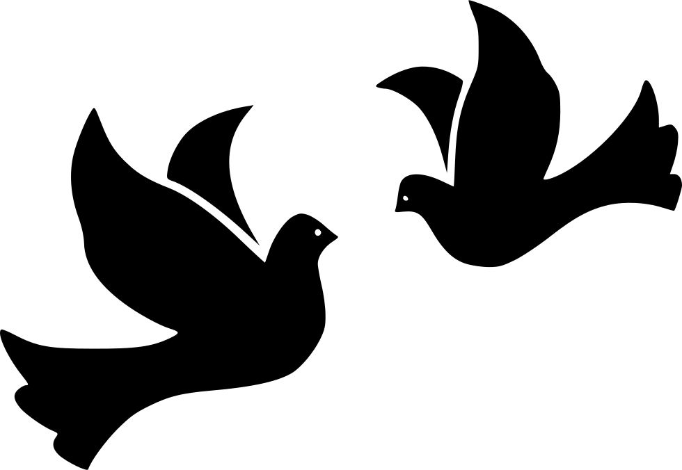 Bird birds dove doves. Wing clipart svg file free