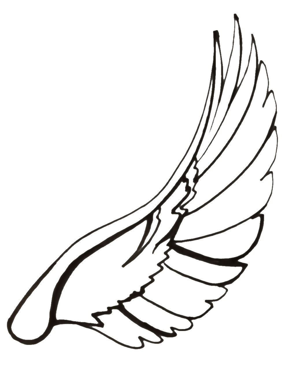 Wings line drawing at. Wing clipart dove wing