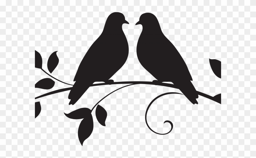 Dove clipart love dove. White marriage drawing two