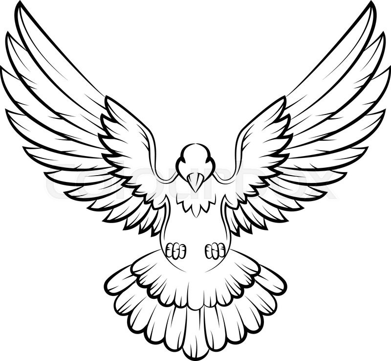 Dove wings drawing at. Doves clipart open wing