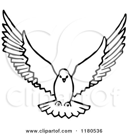 Flying drawing dove royalty. Doves clipart in flight