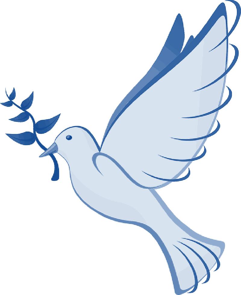 Dove clipart open wing. Hello world sikh riots