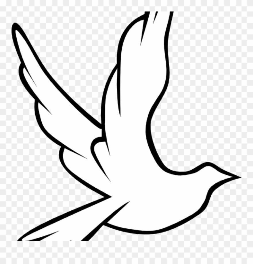 Dove images clip art. Doves clipart rainbow