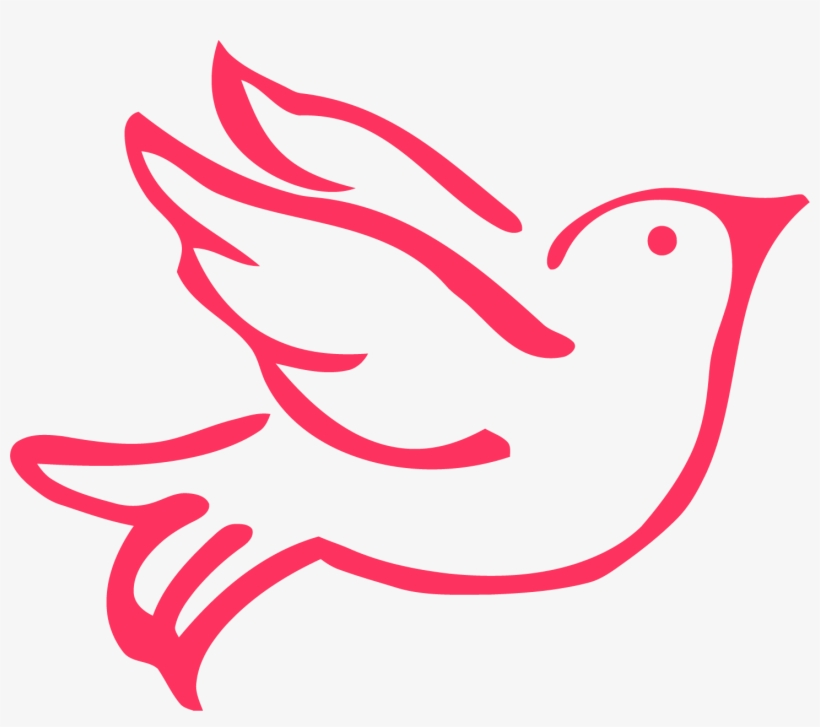 Dove clipart red. Bird png transparent background