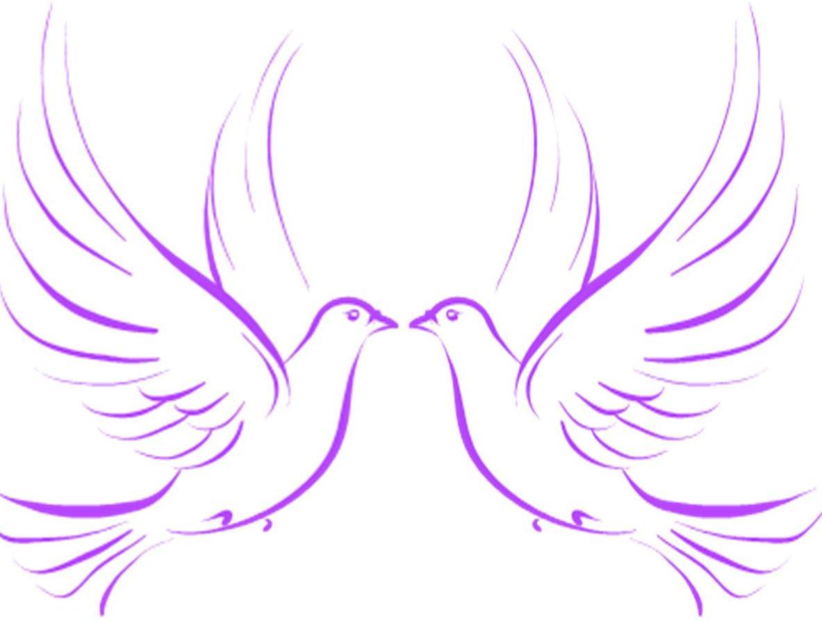 Dove clipart ribbon. Free cliparts download clip