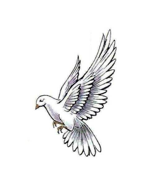 Flowers doves in flight. Dove clipart side view