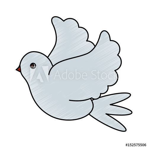 Dove clipart side view. Color pencil image bird