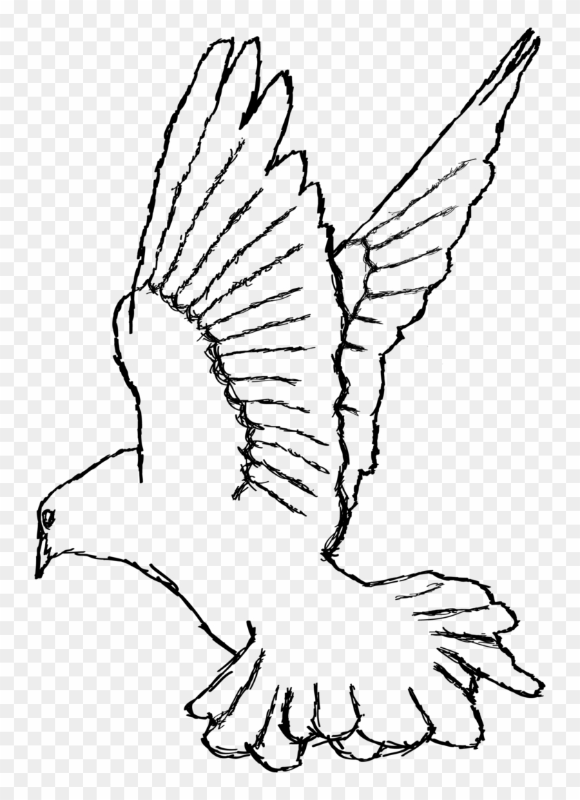 Turtle white drawing png. Dove clipart small dove