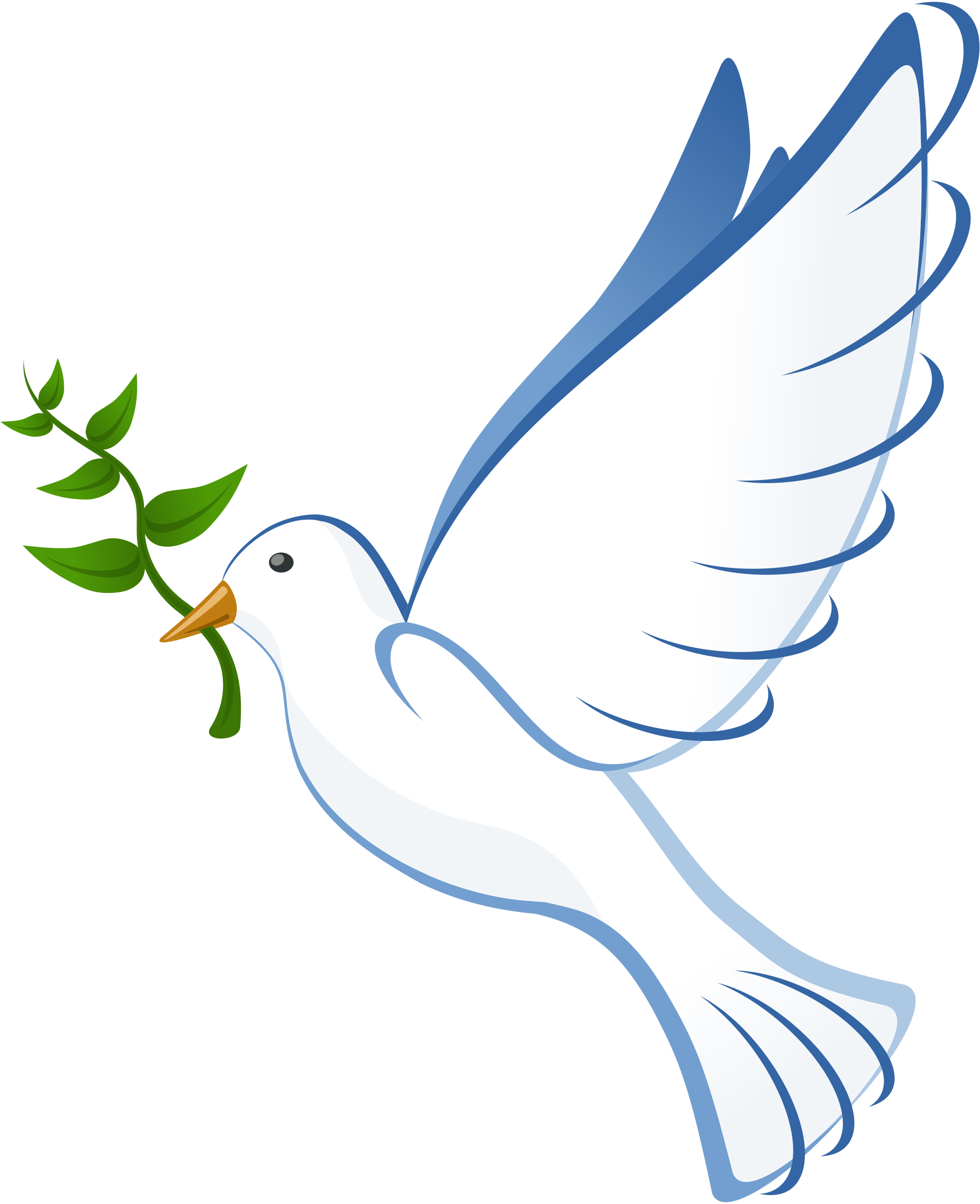 Dove big image png. Doves clipart feather