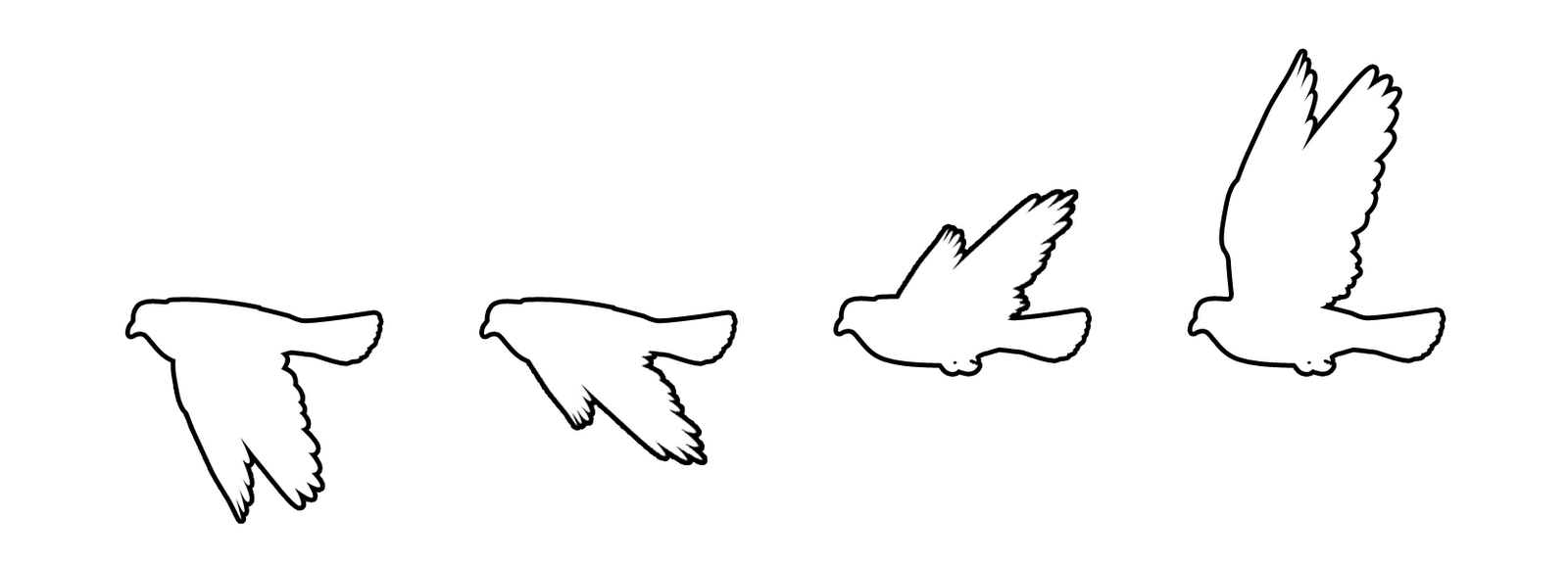Dove clipart vector. Sequence free images at