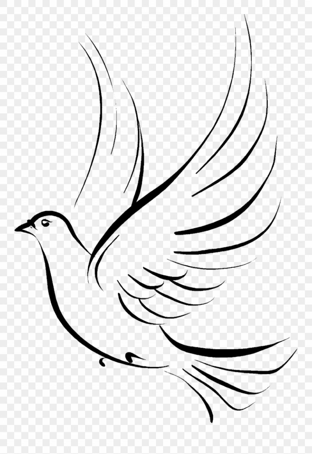 Ttwbbrdove funeral dove clip. Doves clipart vector png