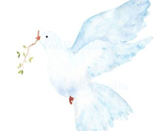 Etsy . Dove clipart watercolor