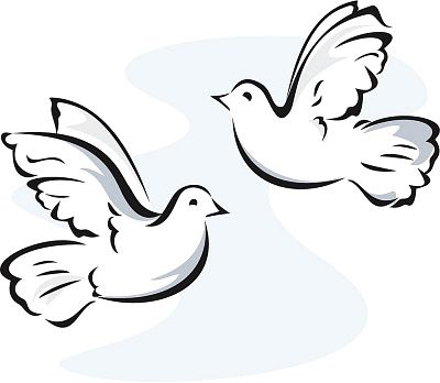 Doves clipart. White turtle clipartfest art