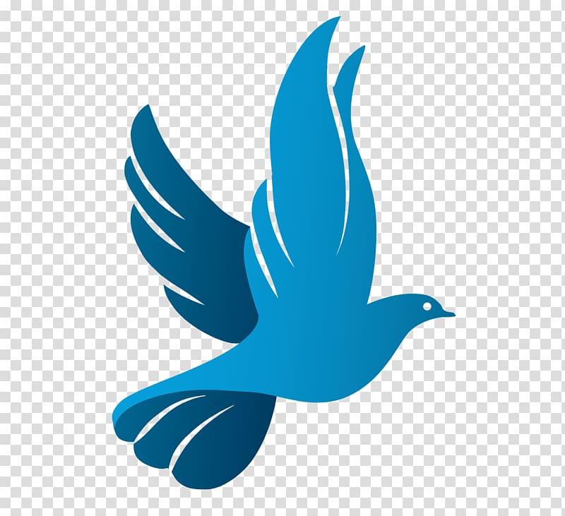 Bird columbidae as symbols. Doves clipart blue