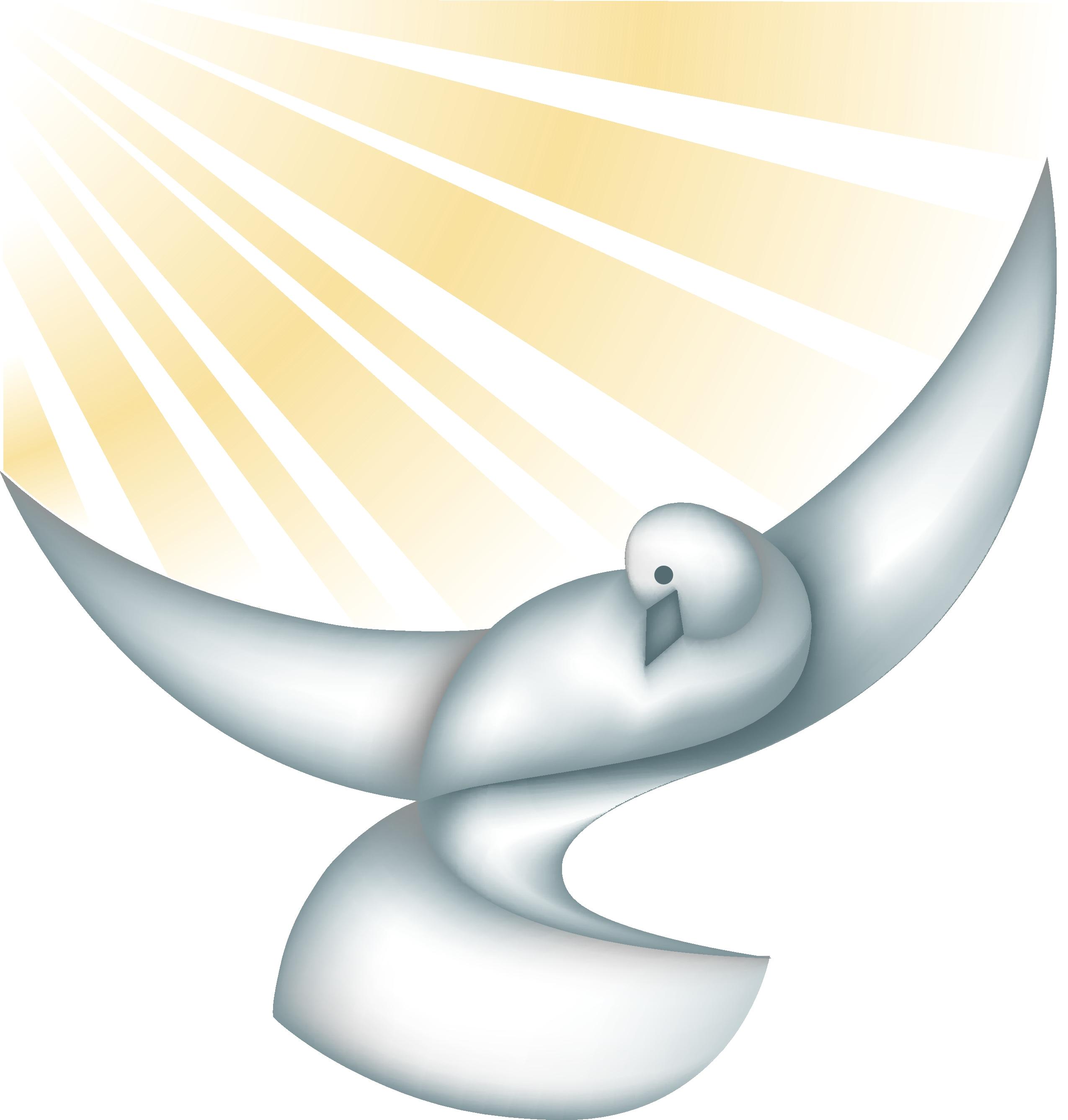 Dove in the sun. Doves clipart church
