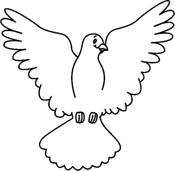 Columbidae white dove transparent. Doves clipart open wing
