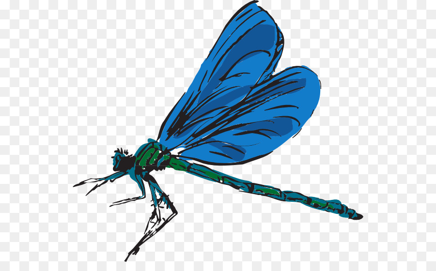 Free content download clip. Dragonfly clipart