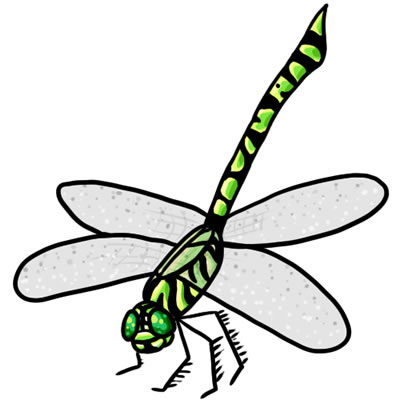 Dragonfly clipart.  free clip art