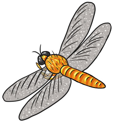 Insects clipart thumbi. Free dragonfly cliparts download